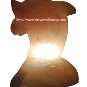 khewra-dolphin-salt-lamp