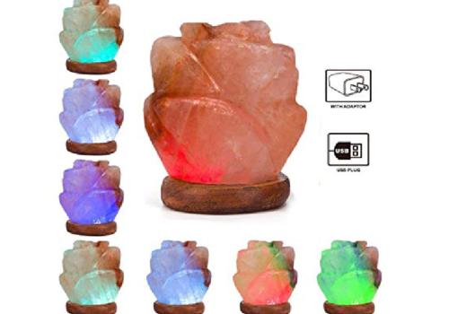 Flower Salt Lamp (USB)