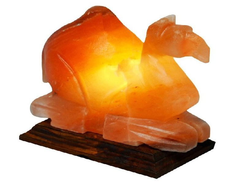 Camel Salt Lamp (HandiCraft)