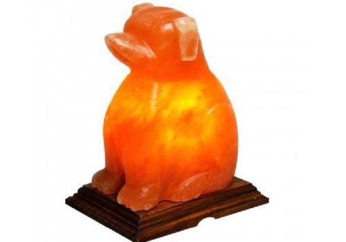 Dog Salt Lamp (HandiCraft)