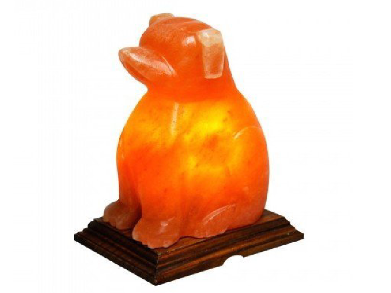 Dog Salt Lamp (HandiCraft)