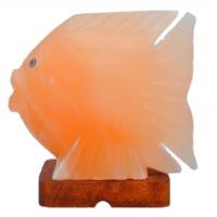 Khewra Fish Salt Lamp