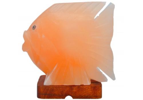 Fish Salt Lamp (HandiCraft)