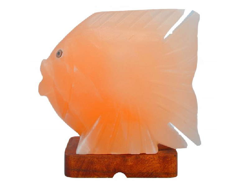 Fish Salt Lamp (HandiCraft)