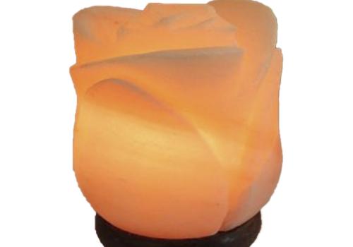 Flower Salt Lamp (Crafted)
