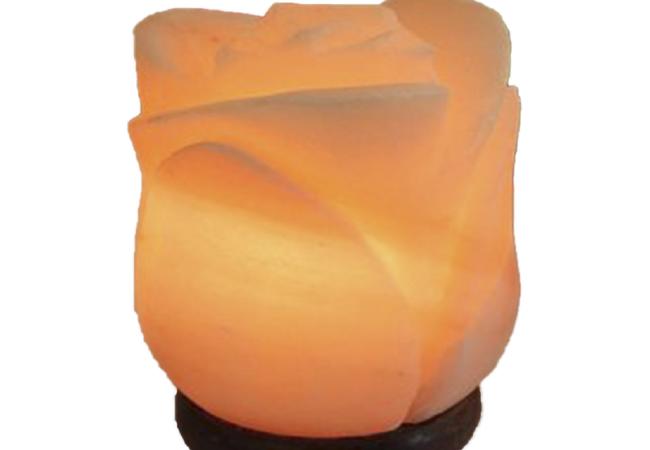 Khewra Flower Salt Lamp