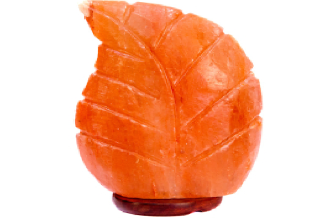 Khewra Leaf USB Lamp