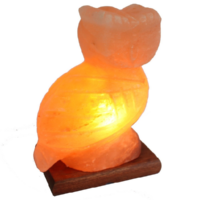 Khewra Owl Salt Lamp