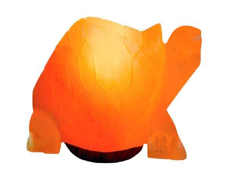 Turtle Salt Lamp (HandiCraft)